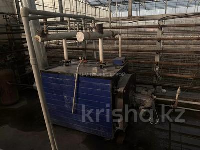 Тепличный комплекс за 105 млн 〒 в Туздыбастау (Калинино) — фото 20