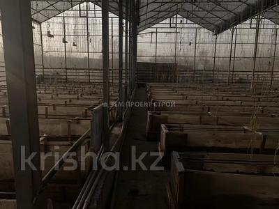 Тепличный комплекс за 105 млн 〒 в Туздыбастау (Калинино) — фото 15