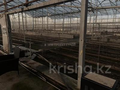 Тепличный комплекс за 105 млн 〒 в Туздыбастау (Калинино) — фото 7