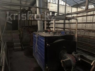 Тепличный комплекс за 105 млн 〒 в Туздыбастау (Калинино) — фото 8