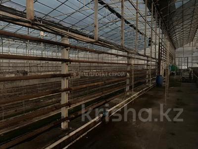 Тепличный комплекс за 105 млн 〒 в Туздыбастау (Калинино) — фото 9