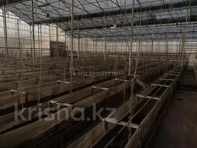 Тепличный комплекс за 105 млн 〒 в Туздыбастау (Калинино) — фото 11