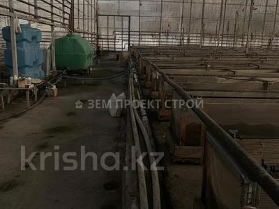 Тепличный комплекс за 105 млн 〒 в Туздыбастау (Калинино) — фото 12