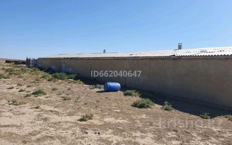 Сельское хозяйство, Махамбеттен 14 км за 30 млн 〒