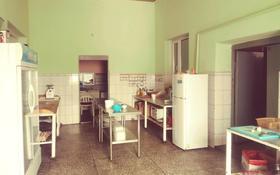 действуещие кафе (Султан) за 160 млн 〒 в Байтереке (Новоалексеевке)
