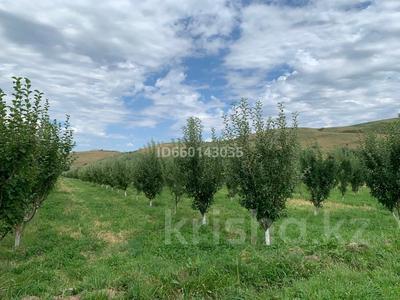Яблоневый сад 4га за 42 млн 〒 в Каракемере