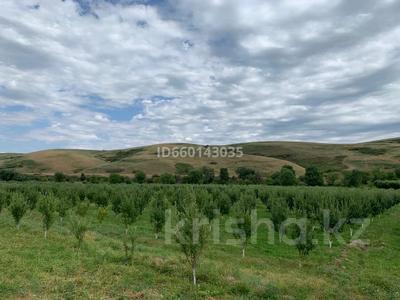 Яблоневый сад 4га за 42 млн 〒 в Каракемере — фото 6