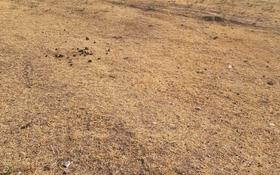 Участок 8 соток, Солстык Саяжай за 4.3 млн 〒 в Шымкенте, Каратауский р-н