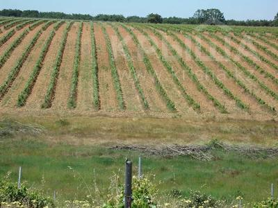 Производство, сельское хозяйство, иное, LE-442 за ~ 405.6 млн 〒 — фото 4