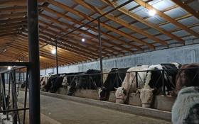 Сельское хозяйство за 35 млн 〒 в Шымкенте, Каратауский р-н