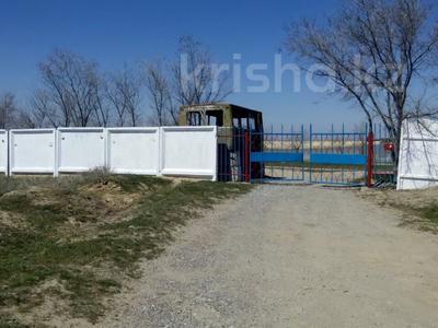 База отдыха Капчагай за 55 млн 〒 — фото 2