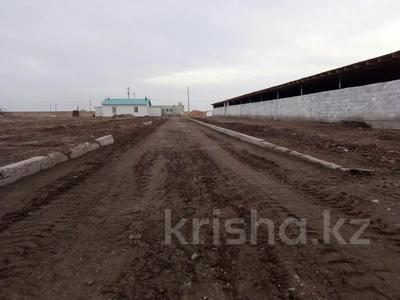 Откорм база, МТФ за 130 млн 〒 в Байсерке — фото 5