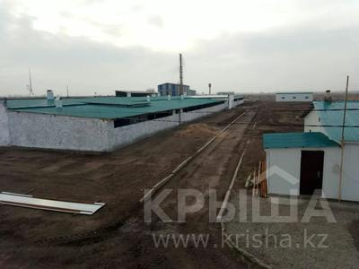 Откорм база, МТФ за 130 млн 〒 в Байсерке — фото 9