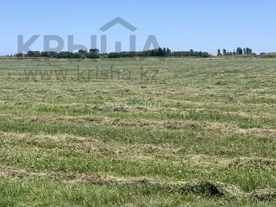 Ферма - фазенда с племенными овцами за 210 млн 〒 в Казаткоме — фото 10