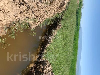 Ферма - фазенда с племенными овцами за 210 млн 〒 в Казаткоме — фото 11