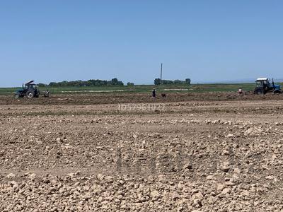 Ферма - фазенда с племенными овцами за 210 млн 〒 в Казаткоме — фото 12