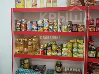 Магазин площадью 50 м², Аркабай 280 б за 100 000 〒 в Байсерке — фото 6