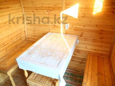3-комнатный дом, 123.3 м², 10.5 сот., Мичуринское 33/2 за 21 млн 〒 — фото 5