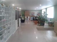 Офис площадью 187 м²