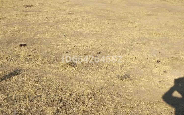 Участок 8 соток, мкр Бадам-1 за 3.5 млн 〒 в Шымкенте, Енбекшинский р-н