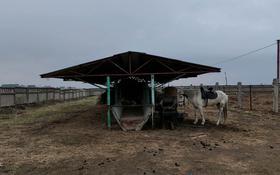 Фазенда со скотами за 65 млн 〒 в Косозен