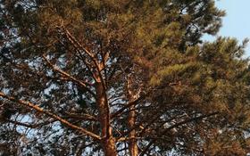 Дача с участком в 7 сот., Байкальская 15 — Сатпаева за 17.8 млн 〒 в Талгаре