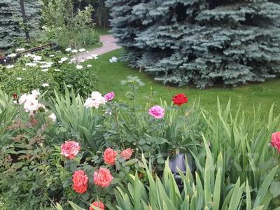 7-комнатный дом, 500 м², 20 сот., мкр Нурлытау (Энергетик) за 247 млн 〒 в Алматы, Бостандыкский р-н — фото 43