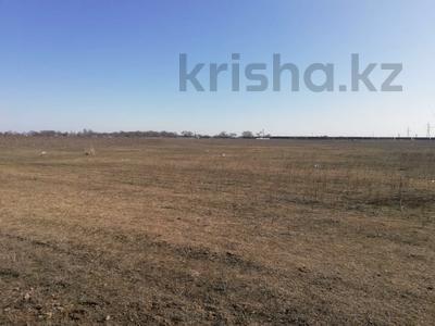 Участок 5 га, Кайнарский с/о за ~ 95.2 млн 〒 в Талгаре — фото 4