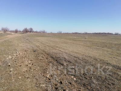 Участок 5 га, Кайнарский с/о за ~ 95.2 млн 〒 в Талгаре — фото 5