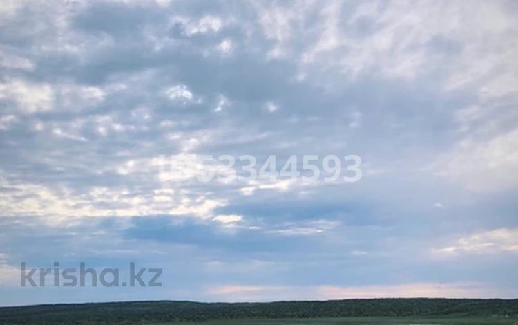 Фазенда крестьянское хозяйство за 250 млн 〒 в Акшах