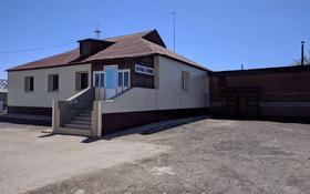 4-комнатный дом, 250 м², 50 сот., Быржан Сала 12 за 23 млн 〒 в