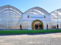 Тепличный комплекс за ~ 1.5 млрд 〒 в Шымкенте, Каратауский р-н