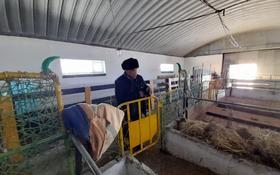 Хозяйство для животноводство за 40 млн 〒 в Жезказгане