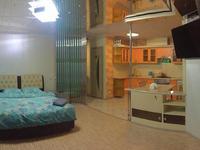 1-комнатная квартира, 25 м², 4 этаж посуточно