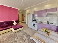 1-комнатная квартира, 45 м², 3/12 этаж по часам