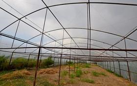 Тепличное хозяйство за 39 млн 〒 в Каскелене