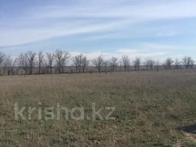 Участок 35.5 га, Алматинская обл. за ~ 5.7 млн 〒 — фото 7
