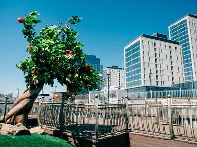 3-комнатная квартира, 102.97 м², 16/18 этаж, Е-10 17л за ~ 39.6 млн 〒 в Нур-Султане (Астана), Есиль р-н — фото 8
