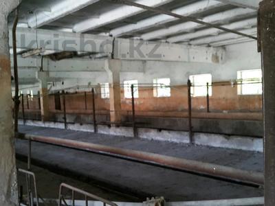 Действующее хозяйство-комплекс за 3.4 млрд 〒 в Алматинской обл. — фото 8