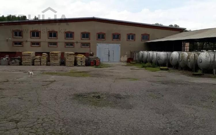 Завод 4.5 га, Есик за 230 млн 〒