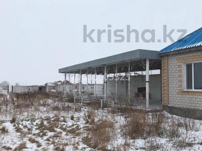 базу под кх или производство за 20 млн 〒 в Павлодарской обл. — фото 8