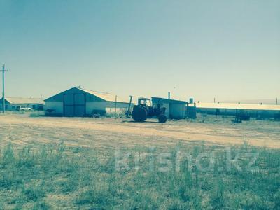 Животноводческая ферма за ~ 141.8 млн 〒 в Капчагае — фото 3