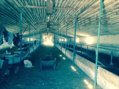 Животноводческая ферма за ~ 141.8 млн 〒 в Капчагае — фото 4