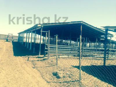 Животноводческая ферма за ~ 141.8 млн 〒 в Капчагае — фото 5