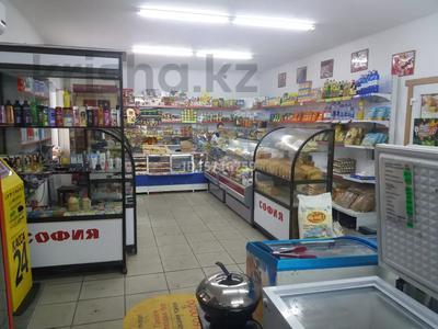 Магазин площадью 130 м², Джангильдина 117 за 50 млн 〒 в Семее — фото 23