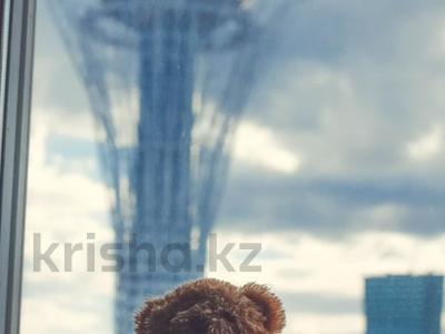 1 комната, 50 м², Кунаева 14а за 35 000 〒 в Нур-Султане (Астана), Есиль р-н — фото 2