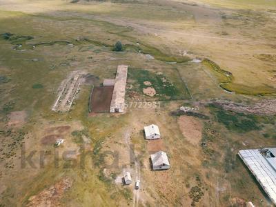 Крестьянское хозяйство за 15 млн 〒 в Калбатау — фото 12