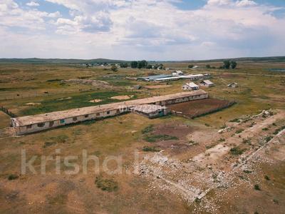 Крестьянское хозяйство за 15 млн 〒 в Калбатау — фото 7