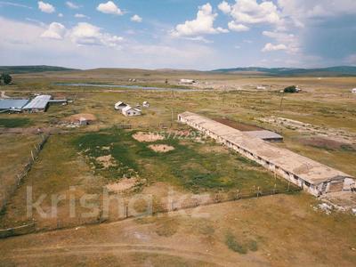 Крестьянское хозяйство за 15 млн 〒 в Калбатау — фото 8