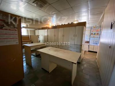 Здание, площадью 160.1 м², Пер. Талгарский 6 за 40 млн 〒 в Байтереке (Новоалексеевке) — фото 10